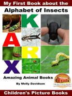 My First Book about the Alphabet of Insects