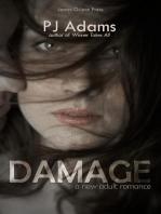 Damage (A New Adult romance)