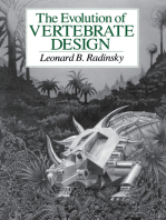 Evolution of Vertebrate Design