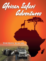 African Safari Adventures