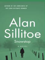 Snowstop