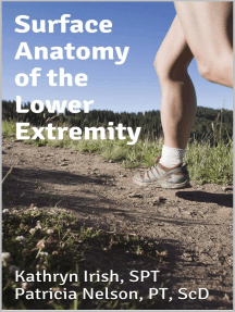 Surface Anatomy of the Lower Extremity