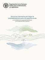 Las Directrices voluntarias para lograr la sostenibilidad de la pesca en pequeña escala en el contexto de la seguridad alimentaria y la erradicación de la pobreza