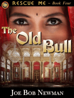 The Old Bull