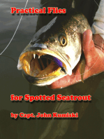 Practical Flies for Spotted Seatrout