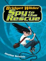 Bridget Wilder #2