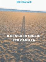 Il senso di Giulio per Camilla