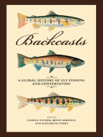 Backcasts