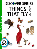Things that Fly Big Book