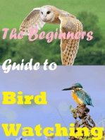 The Beginners Guide to Bird Watching
