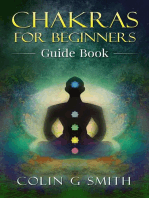 Chakras for Beginners Guide Book