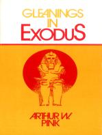 Gleanings in Exodus