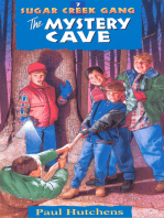 The Mystery Cave