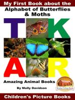 My First Book about the Alphabet of Butterflies & Moths