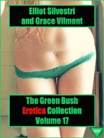 The Green Bush Erotica Collection Volume 17