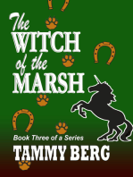 The Witch of the Marsh... Book Three of a Series