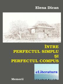 Între perfectul simplu și perfectul compus