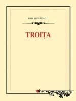 Troița