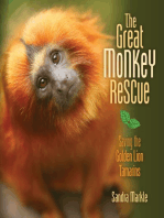 The Great Monkey Rescue: Saving the Golden Lion Tamarins