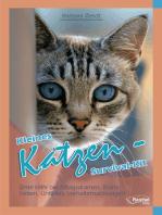 Kleines Katzen-Survival-Kit