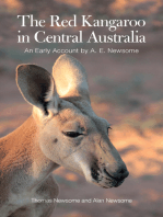 The Red Kangaroo in Central Australia: An Early Account by A. E. Newsome