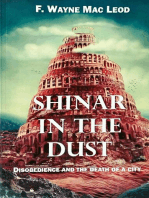 Shinar in the Dust