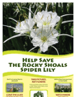 About the Rocky Shoals Spider Lily Free download PDF and Read online