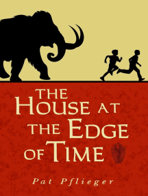 The House at the Edge of Time