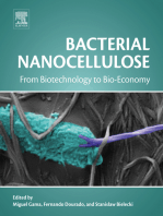 Bacterial Nanocellulose