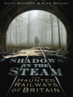 Shadows in the Steam
