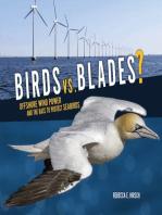 Birds vs. Blades?