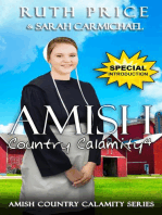 An Amish Country Calamity 4