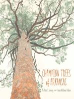 Champion Trees of Arkansas
