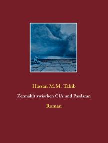 Zermahlt zwischen CIA und Pasdaran: Roman