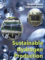 Sustainable Hydrogen Production