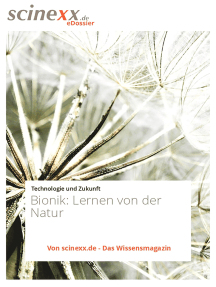 Bionik: Lernen von der Natur