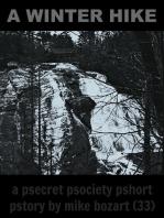 A Winter Hike