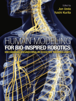 Human Modeling for Bio-Inspired Robotics: Mechanical Engineering in Assistive Technologies