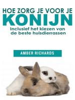 Hoe zorg je voor je konijn