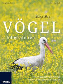 Vögel fotografieren: Ein umfassender Ratgeber zu Technik, Gestaltung und Verhalten