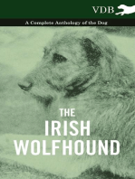 The Irish Wolfhound - A Complete Anthology of the Dog