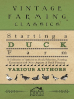 Starting a Duck Farm - A Collection of Articles on Stock Selection, Rearing, Economics and Other Aspects of Duck Farming