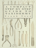 A Compact Step by Step Guide to Taxidermy