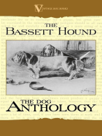 The Basset Hound - A Dog Anthology (A Vintage Dog Books Breed Classic)
