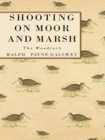 Shooting on Moor and Marsh - The Woodcock