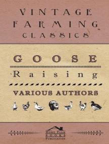 Goose Raising