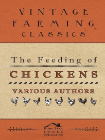The Feeding of Chickens