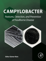 Campylobacter: Features, Detection, and Prevention of Foodborne Disease