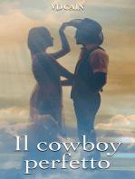 Il cowboy perfetto