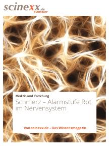 Schmerz: Alarmstufe Rot im Nervensystem